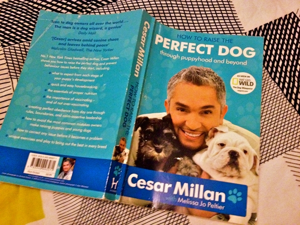 Cesar Millan - How To Raise The Perfect Dog