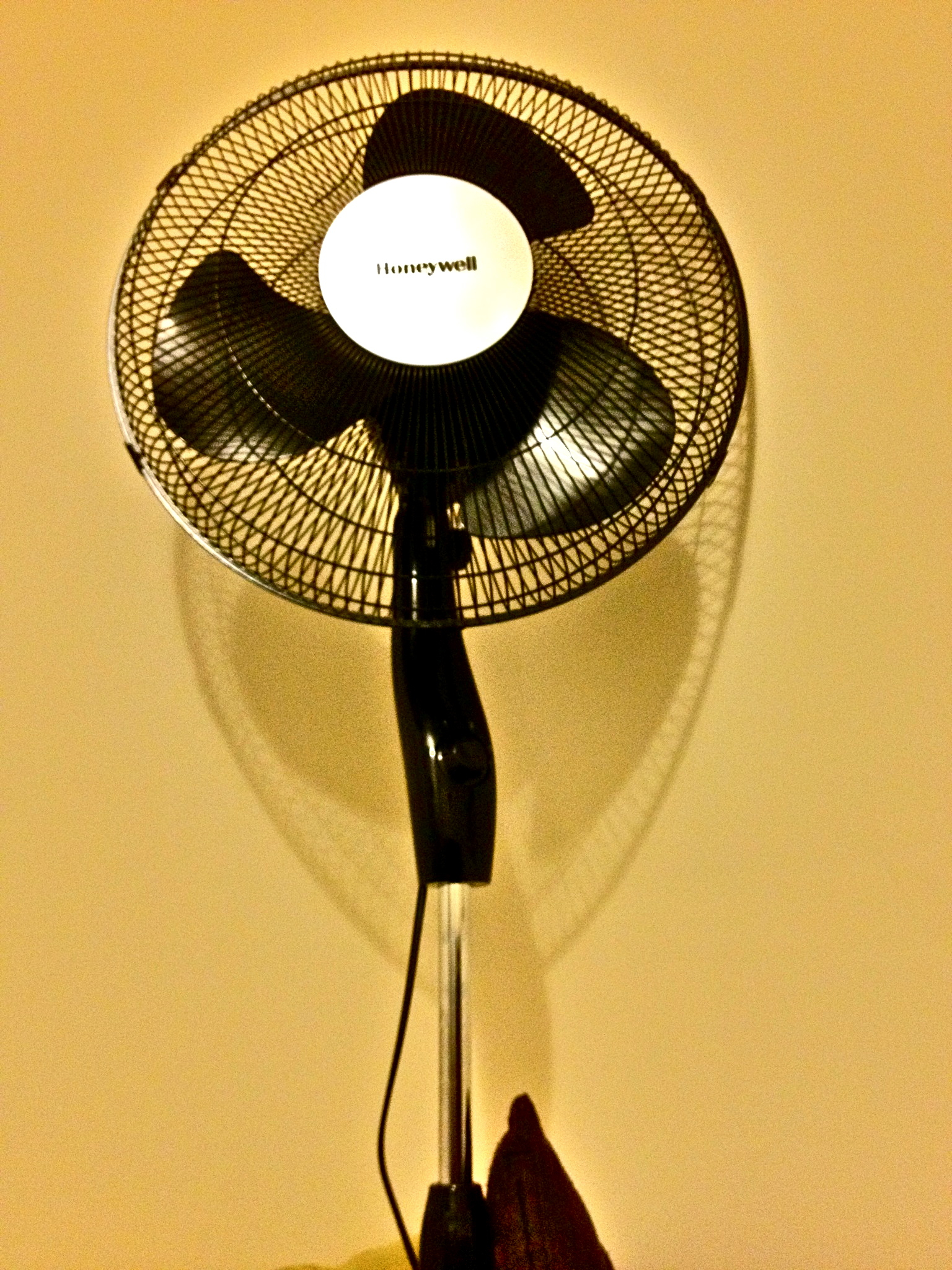 fine elements inch chrome oscillating pedestal fan